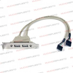 CABLE CONECTOR 2 USB A PLACA BASE
